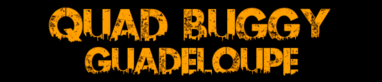 Balade en Quad et Buggy
