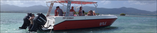 Le Lagon Caraïbes - Catamaran à moteur